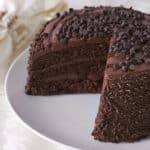 chocolate-chip-cake